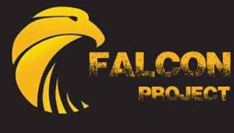 Falcon project kodi addon